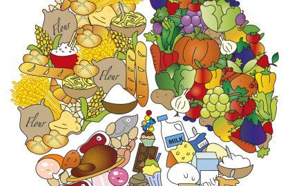 כמה חלבון? כמה פחמימה? איך מרכיבים מנה לתינוק?
