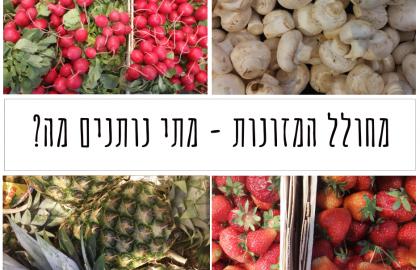 מחולל המאכלים – שלבים בחשיפה למוצקים – מתי נותנים מה?