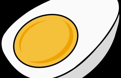 מתי אפשר להתחיל לתת ביצים לתינוק?