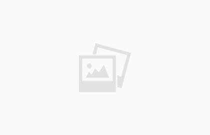קציצות ברוקולי אפויות – המתכון של אלונה